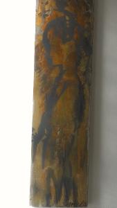 melanie-brochet-jeune-fille-mongole- 25x100cm-toile-sur-chassis-2012